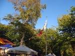 Sommerfest 2018_106